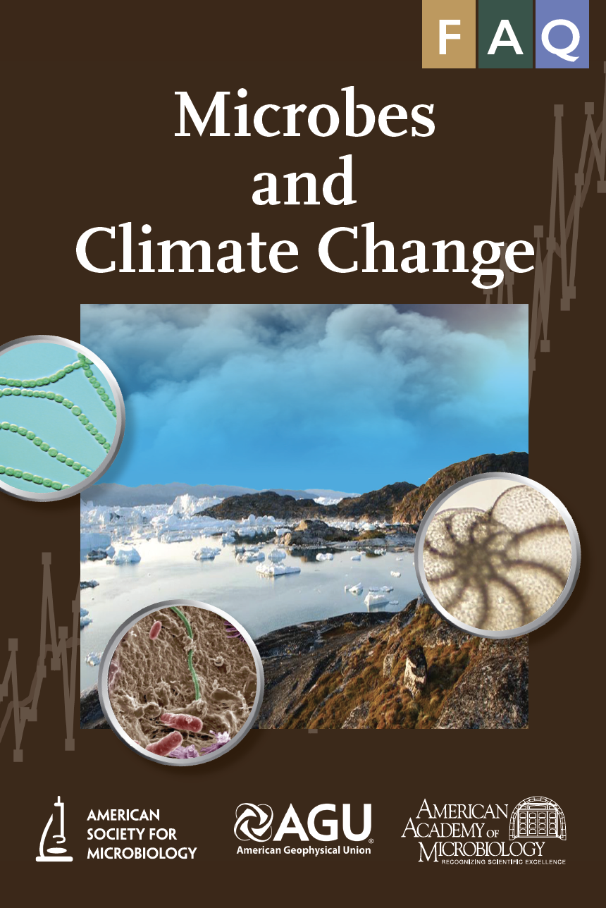 climate change faq flyer