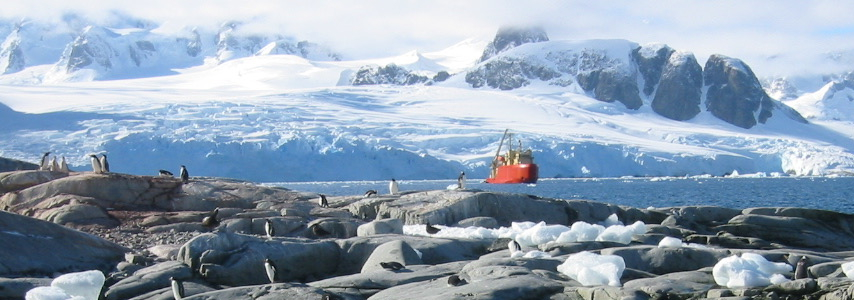 Research in Antarctica