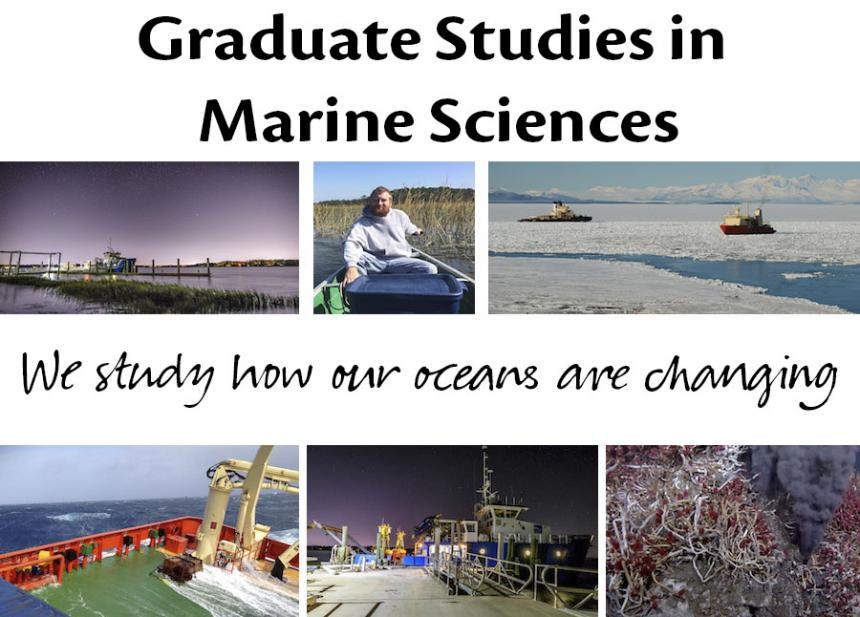 graduate studies marine sciences